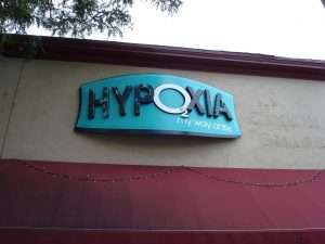 arched aluminum composite panel, custom hidden hardware mounting, carved dimensional HDU letters, vinyl graphics